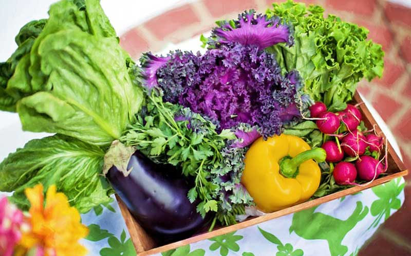 Vegetable Diversity for a Healthy Diet